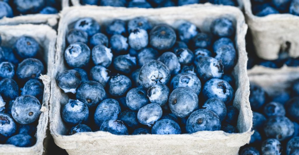 blueberries in compostable punnets