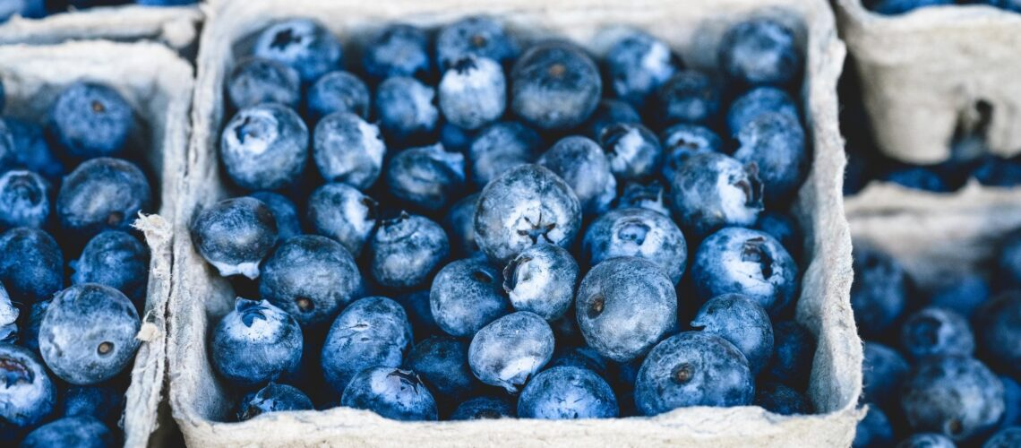 Blueberries Cardboard Punnet